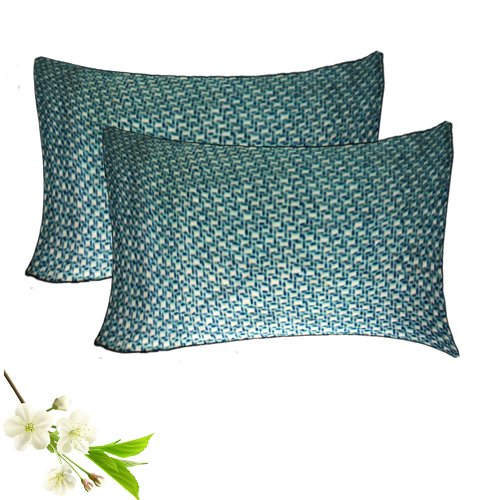 Decorative Pillow Cases – 100% Cotton –  Blue With Cream – Set of 2 – Avioni